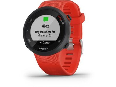 GARMIN Forerunner 45 GPS Watch - Lava Red