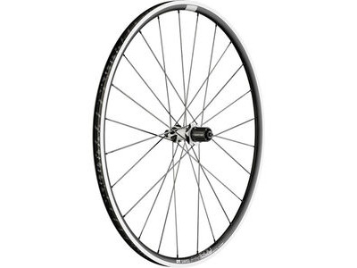 DT Swiss PR 1600 SPLINE, clincher 23 x 18mm, rear